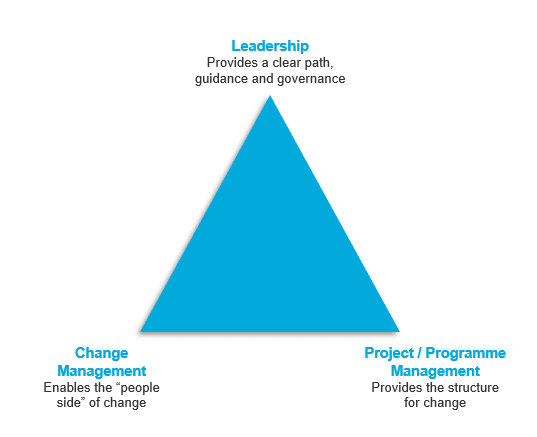 Triangle of Leadership, Project and Programme Management combined with Change Management provide a balanced 3 pronged approach.