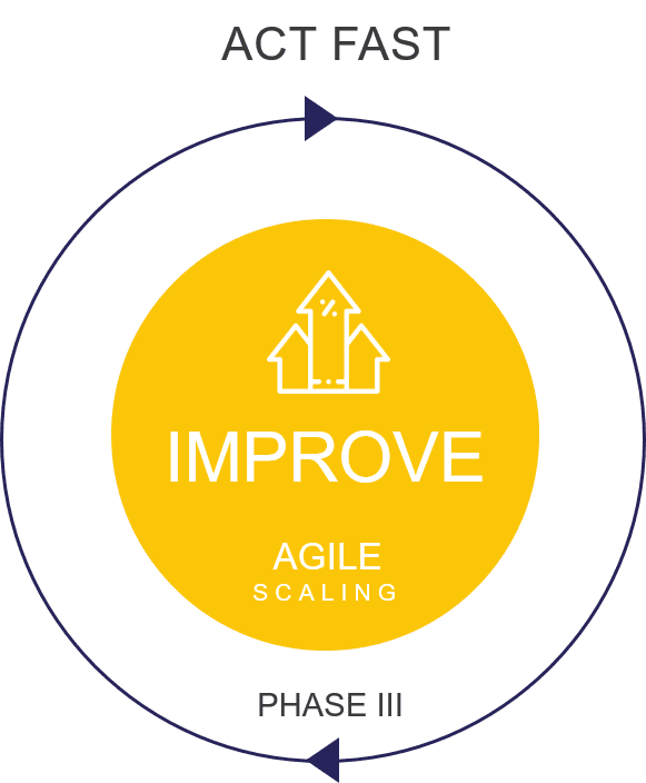 Lean Innovation Improve