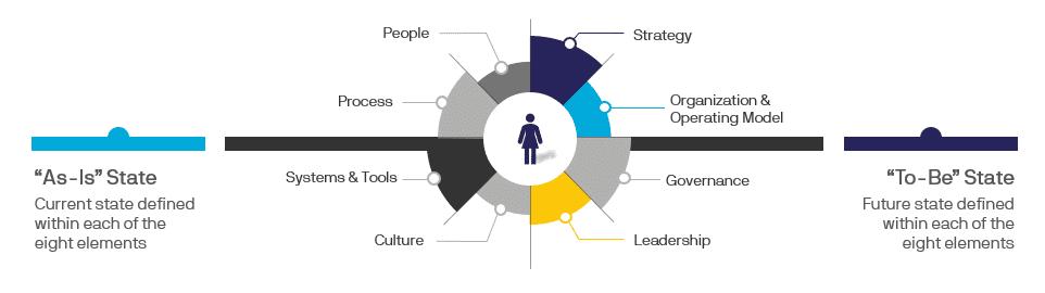PPM Assessment Roadmap Services