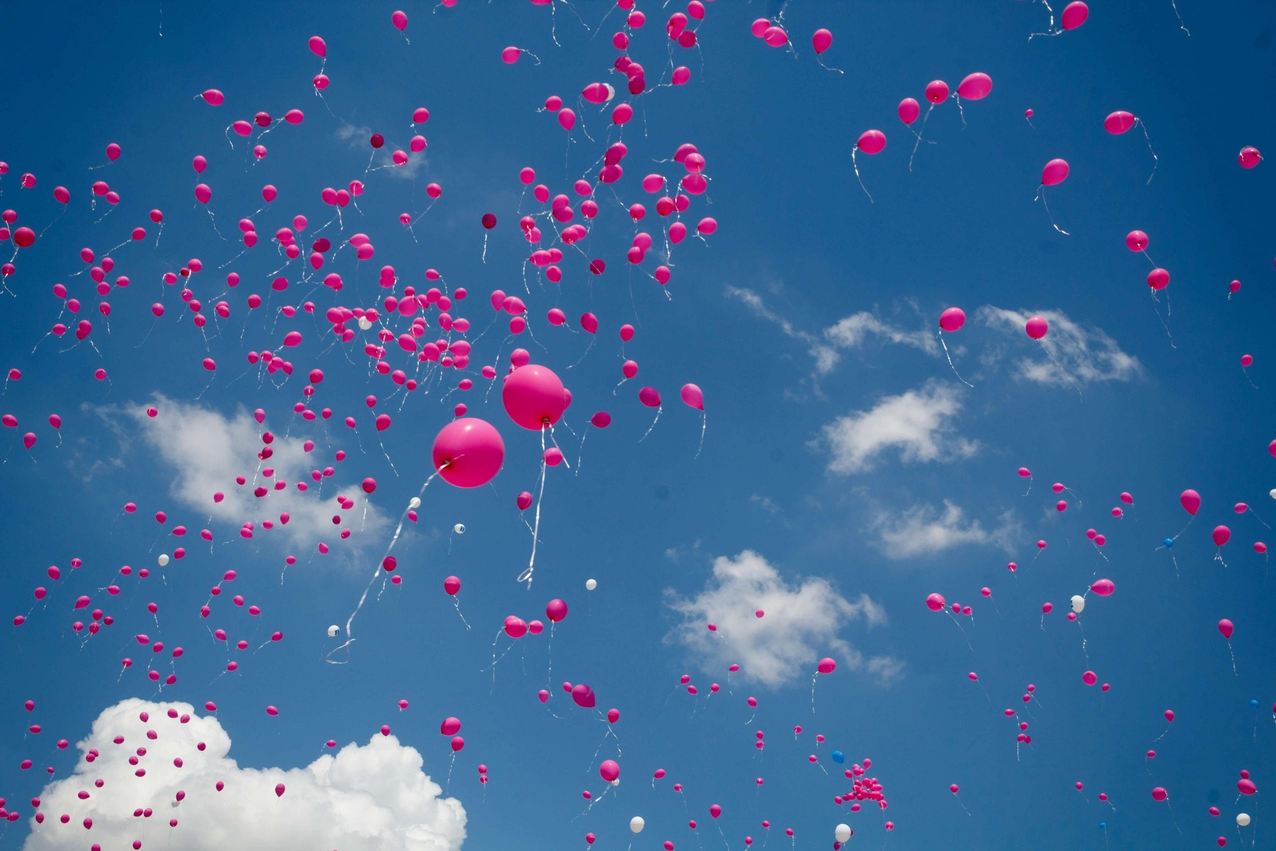 Pink balloons flying