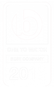 Ones To Watch 2017 logo -white